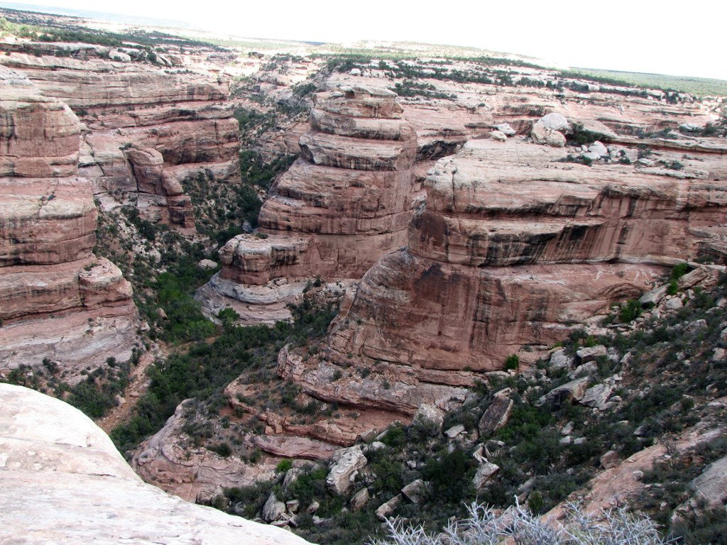 Todie Canyon an Grand Gulch